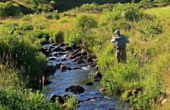 Pêche à la mouche dans le Tauron